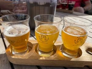 Flakhaven ølsmagning
